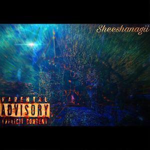Sheeshanagii - Nagii Nights