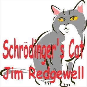 Jim Redgewell - Schrodinger's Cat
