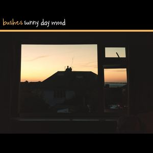 Bushes - Sunny Day Mood