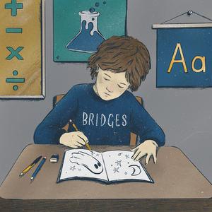 BRIDGES - Maths, Science and English