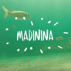 Waxxi - Madinina (Instrumental)