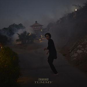Tamino