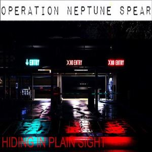 Operation Neptune Spear - Hiding in Plain Sight