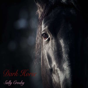 Sally Crosby - Dark Horse