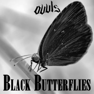OVVLS - BLACK BUTTERFLIES