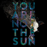 The Entire City - You Are Not The Sun