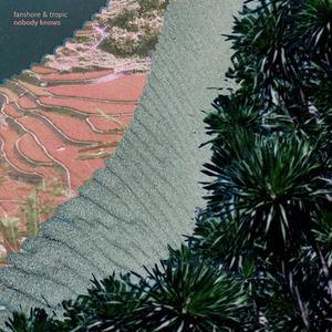 Fanshore & Tropic  - Nobody Knows