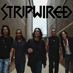 Stripwired - Run