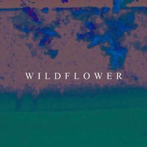 King Kuda - Wildflower