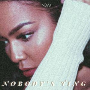 NDAI - Nobody's Ting