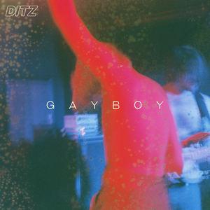 DITZ - Gayboy