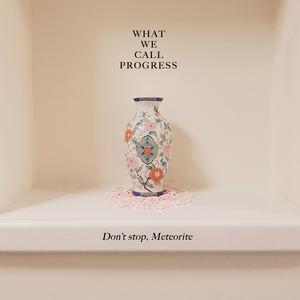 What We Call Progress - Don't Stop, Meteorite