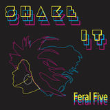 Feral Five - Shake It