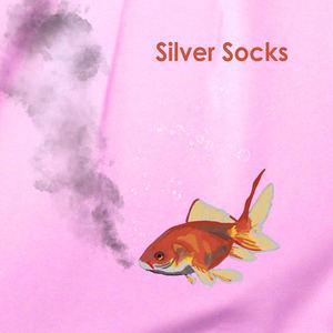 Cat Princess - Silver Socks