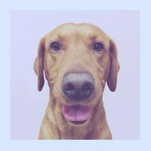 Trunky Juno - Patrick Swayze