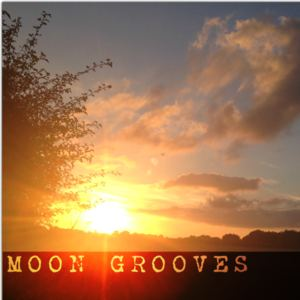 Moon Grooves - Emotions