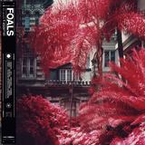 Foals - In Degrees