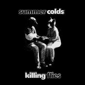 summercolds - Killing Flies