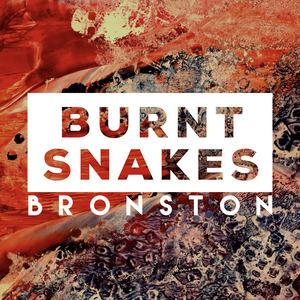 Bronston - Burnt Snakes
