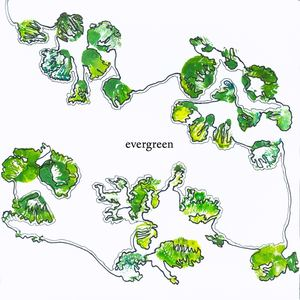 MARKETPLACE - EVERGREEN