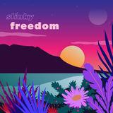 Slinky - Freedom