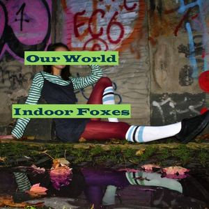 Indoor Foxes - Our World