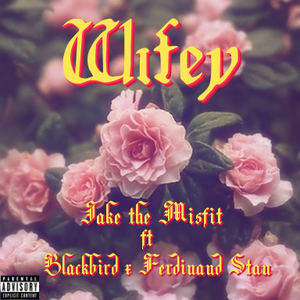 Jake the Misfit - WIFEY - Jake the Misfit x Blackbird x Ferdinand Stan