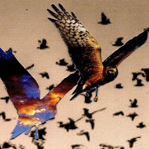 Les Mistons - Keep Flying