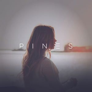 PINES - What You Need (feat Tailor)