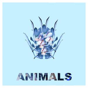 Nick de la Hoyde - Animals