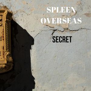 Spleen Overseas - Secret