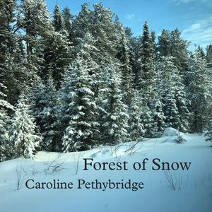 Caroline Pethybridge - Forest of Snow