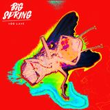 Big Spring - Too Late