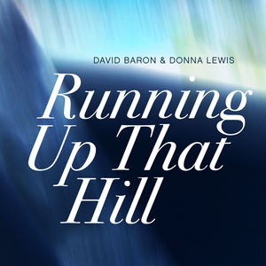 David Bron & Donna Lewis - Running Up That Hill (A Deal With God)