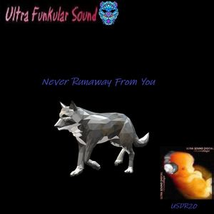 Ultra Funkular Sound - Never Runaway From You