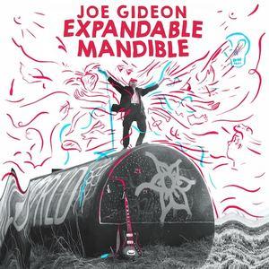 Joe Gideon