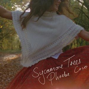 Phoebe Coco - Sycamore Trees