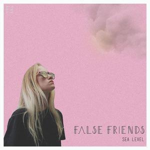 False Friends - Sea Level