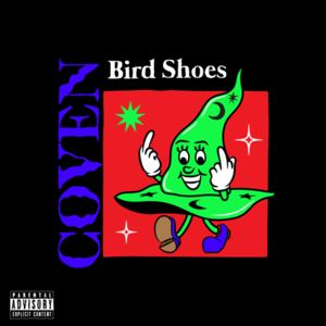 Bird Shoes - Coven