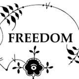 Boris Grann - Freedom