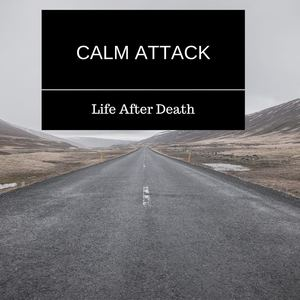 Calm Attack - Life After Death