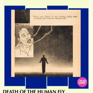 Cross Wires - Death Of The Human Fly