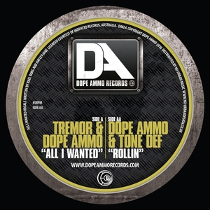 DJ Tremor - All I Wanted