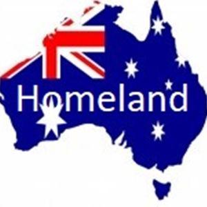 Bluzik - Homeland