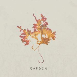 Transit Club - Garden