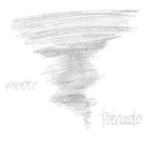 MOOSE - tornado