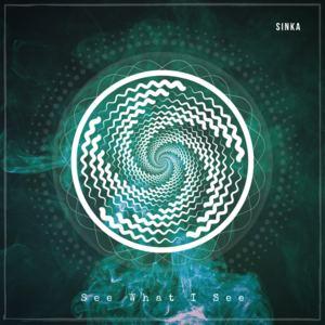 SINKA - See What I See