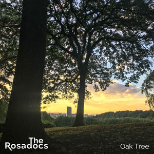 The Rosadocs - Oak Tree