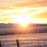 Strawberry Fools - Winter Sun
