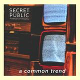 Secret Public - A Common Trend
